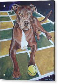 Pit With Ball On Rug Acrylic Print by Laura Bolle