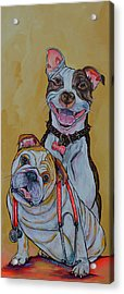 Acrylic Print featuring the painting Pitbull And Bulldog by Patti Schermerhorn