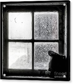 Pitcher In The Window Acrylic Print