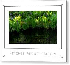 Pitcher Plant Garden Poster Acrylic Print