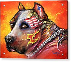 Pit Bull Acrylic Print by Patricia Lintner
