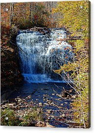 Acrylic Print featuring the photograph Pixley Falls State Park by Diane E Berry