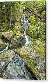 Place Of A Thousand Drips Acrylic Print by Victor Culpepper