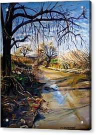 Placerita Creek 1 Acrylic Print by Olga Kaczmar