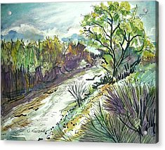 Placerita Creek 3 Acrylic Print by Olga Kaczmar
