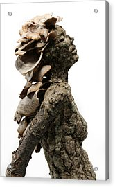 Placid Efflorescence A Sculpture By Adam Long Acrylic Print by Adam Long