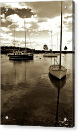 Placid Acrylic Print by Laura DAddona