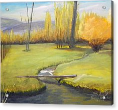 Placid Stream In Field Acrylic Print