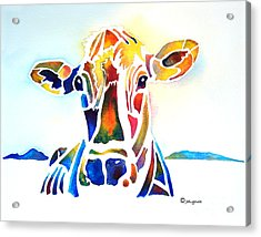 Placid The Cow Acrylic Print by Jo Lynch