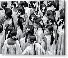 Plaits And Bows Acrylic Print by Tim Gainey