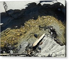 Planet Beach Acrylic Print