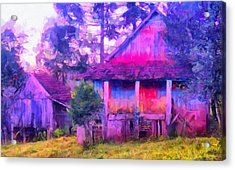 Plank Homes Acrylic Print by Caito Junqueira