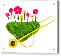 Plant  A Seed...watch It Grow  Acrylic Print by Frederica Georgia