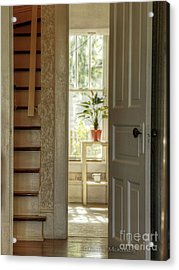 Acrylic Print featuring the photograph Plant In Window by Charles McKelroy