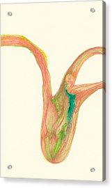 Plant - #ss14dw043 Acrylic Print by Satomi Sugimoto