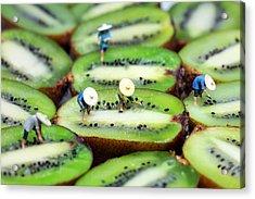 Planting Rice On Kiwifruit Acrylic Print by Paul Ge