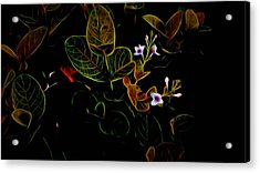 Plants In Abstract 19 Acrylic Print