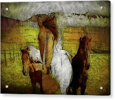 Acrylic Print featuring the photograph Plateau Ponies by Bellesouth Studio