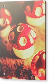 Play Toys Of Imagination Acrylic Print