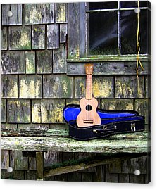 Play With Me Acrylic Print by Kerry Hartjen
