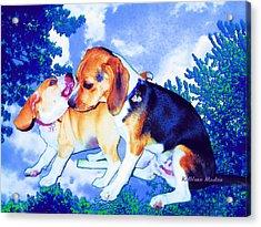 Playful Combat Acrylic Print