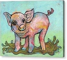 Playful Piglet Acrylic Print