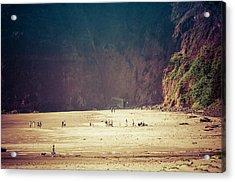 Playing Along Oceanside Oregon Acrylic Print