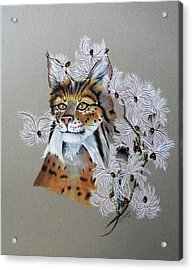 Playing In Milkweed Acrylic Print by Virginia Simmons