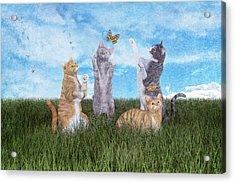 Playtime  Acrylic Print