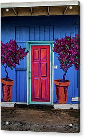 Please Use Other Door Acrylic Print