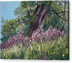 Plein Air Purple Acrylic Print by Mary Giacomini