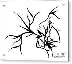 Plethora Acrylic Print