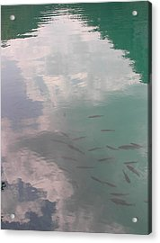 Plitvicelake Acrylic Print