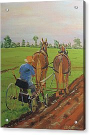 Plowing Match Acrylic Print