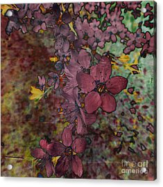 Acrylic Print featuring the photograph Plum Blossom by LemonArt Photography