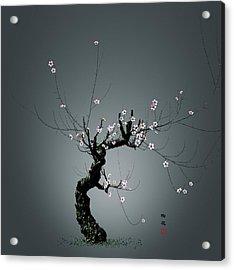 Plum Flower 0204 Acrylic Print by GuoJun Pan