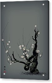 Plum Flower 3 Acrylic Print