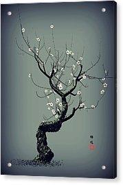 Plum Flower Acrylic Print by GuoJun Pan