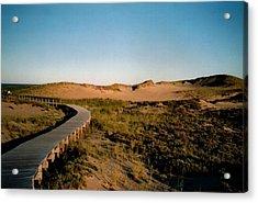 Plum Island Dunes Acrylic Print