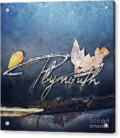 Acrylic Print featuring the photograph Plymouth by Terry Rowe