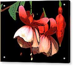 Pod Flower B Acrylic Print