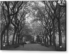 Poets Walk In Central Park Acrylic Print by Christopher Kirby
