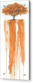 Poinciana Tree Orange Acrylic Print