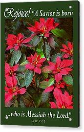 Poinsettia Christmas Acrylic Print