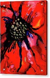 Poinsettia I Acrylic Print by Mary Benke