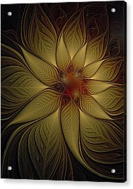 Poinsettia In Gold Acrylic Print