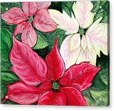 Poinsettia Pastel Acrylic Print by Nancy Mueller