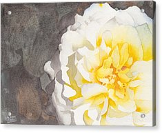 Point Defiance White Flower Acrylic Print