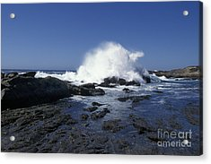 Point Lobos Seascape 2 Acrylic Print