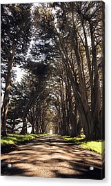 Point Reyes Light Rays Acrylic Print by Gray Mitchell
